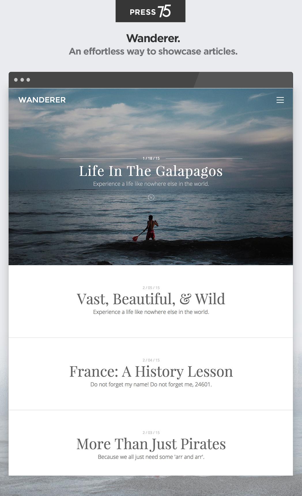 Screenshot of the Wanderer theme