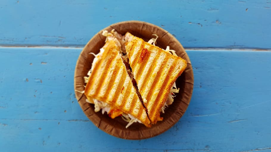 Best Panini Grill Reviews