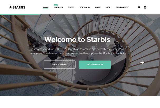 starbis-multipurpose-website-template-for-business