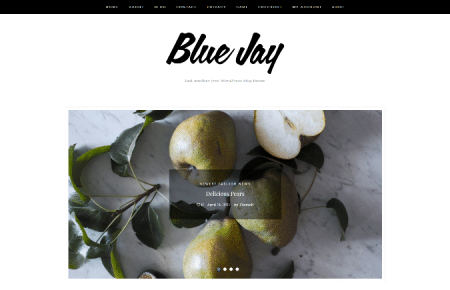 Blue Jay Free WordPress WooCommerce Theme