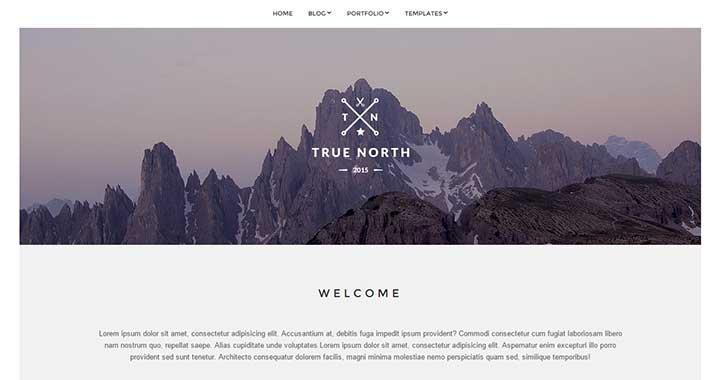 True North wp premium themes free