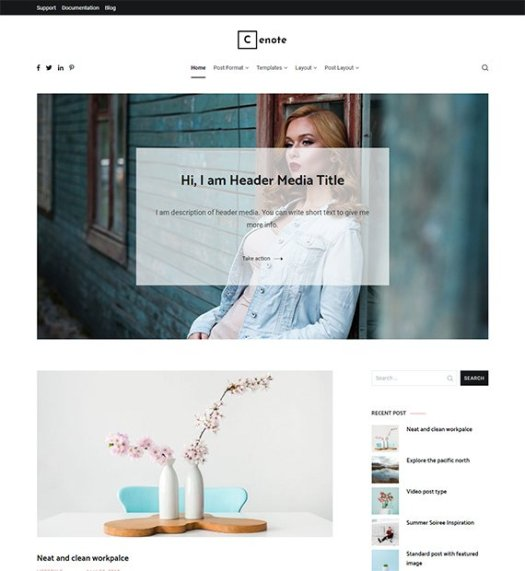 10+ Best and Free WordPress Blog Themes 2020