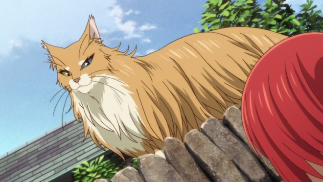 The Ancient Magus' Bride - King of Cats