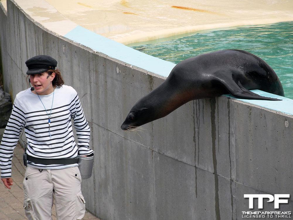 Bouwdewijn-Seapark-02-09-2012-(44)