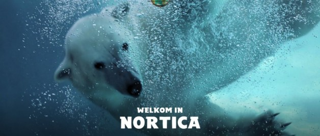 Nortica