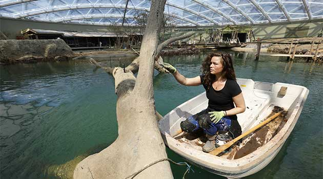 koninklijke burgers 39 zoo opent 39 s werelds grootste. Black Bedroom Furniture Sets. Home Design Ideas