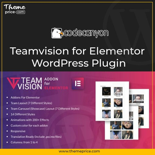 Teamvision for Elementor WordPress Plugin