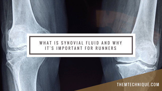 What-is-Synovial-Fluid-AndIts-Importance-to-Runners