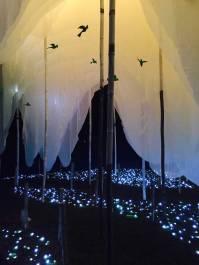 Artificial Light Filtration Night