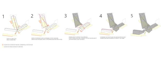 08-Roof-Morphology