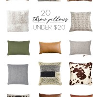 20 Throw Pillows Under $20