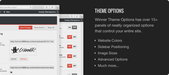 Winner Theme Options