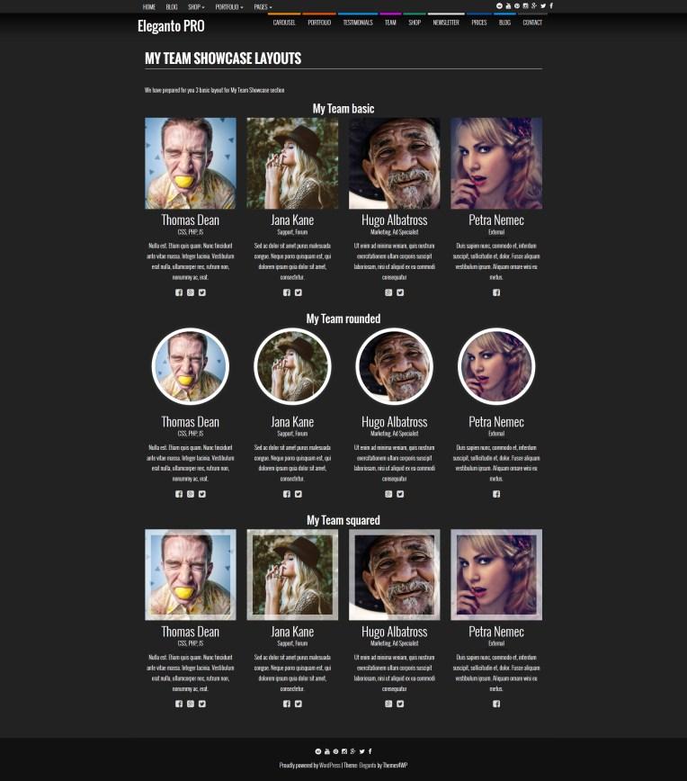 eleganto-one-page-wordpress-theme-my-team-showcase