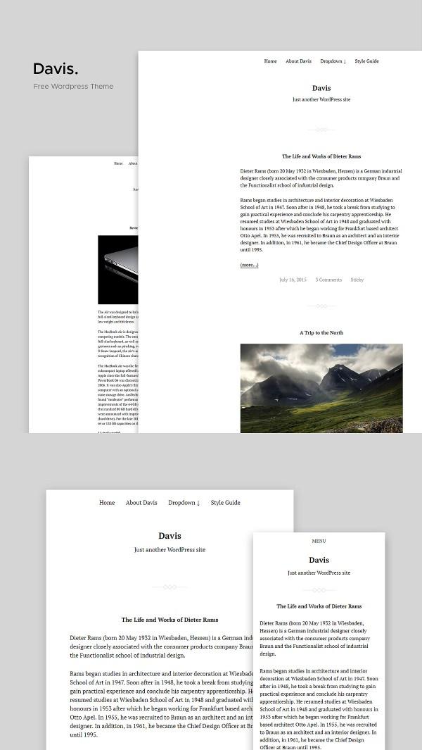 Davis: Free Lightweight Developer-oriented Free WordPress Theme