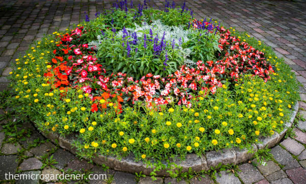 circular flower garden designs SMALL GARDEN DESIGN - The Micro Gardener