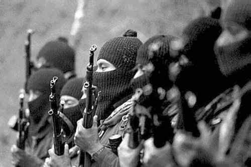 Zapatista_Bear_Arms