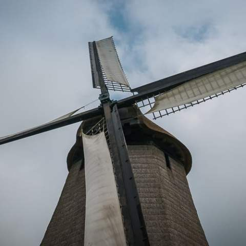 Windmills in Holland – A Photo Gallery