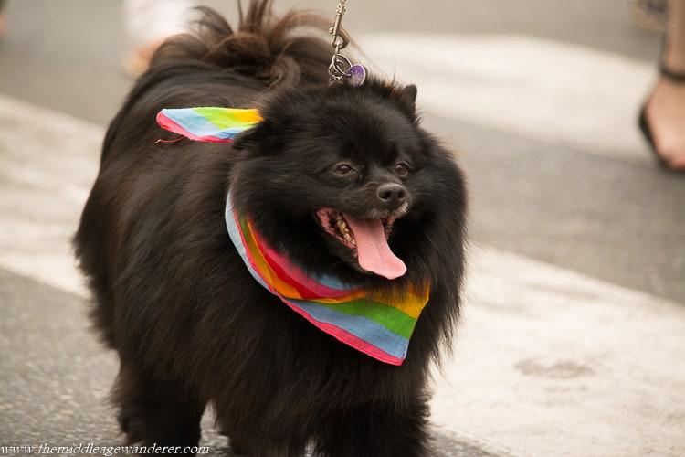 Gay Pride Parade, Victoria