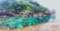 Second tidal pool