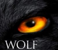 Wolf Land by Jonathan Janz @JonathanJanz @flametreepress @annecater
