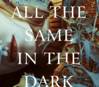 We Are All The Same In The Dark by Julia Heaberlin @juliathrilers @MichaelJBooks