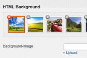 The background images you uploaded are stored in the library with preview.