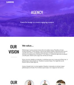 Agency Page 2