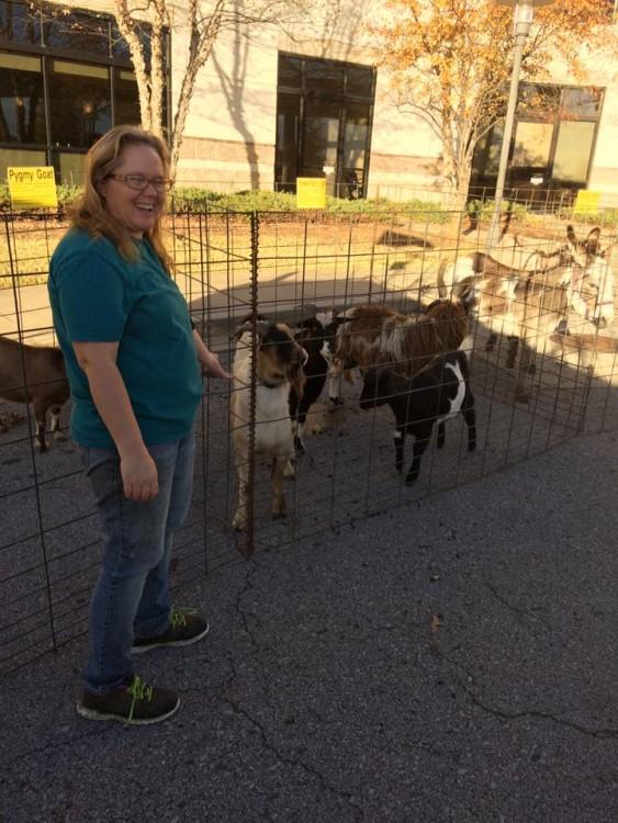 mujer de pie delante de la caja con las cabras