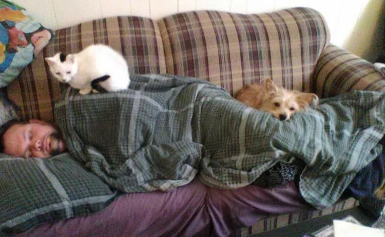 hombre tumbado en el sofá con el gato y el perro