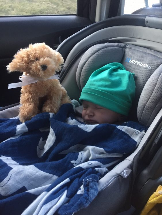 Theo, the author's son sleeping in a carseat with a stuffed animal