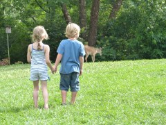 Cousins watching the deer.