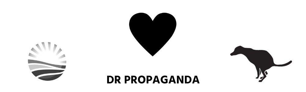 DA propaganda Dr Martin Young Democratic Alliance