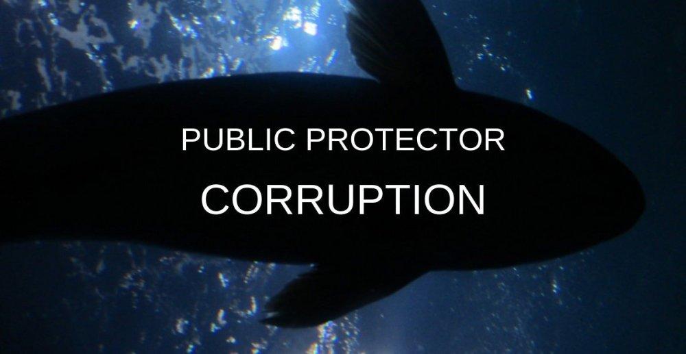 Public Protector corruption Busisiwe Mkhwebane Oupoa Segalwe protecting Democratic Alliance corruption