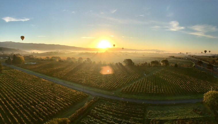 sunrise hot air balloon flight napa valley southwest companion pass