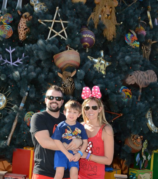Southwest Companion Pass Disney World