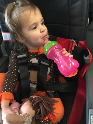 lap infant carseat rules