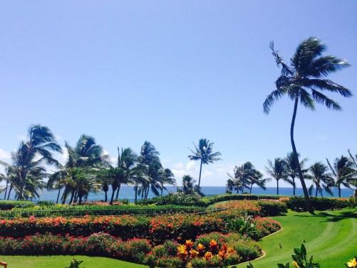 Hawaii Ultimate Rewards