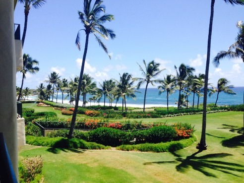 chase ultimate rewards grand Hyatt kauai