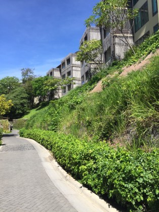 Andaz Costa Rica resort review