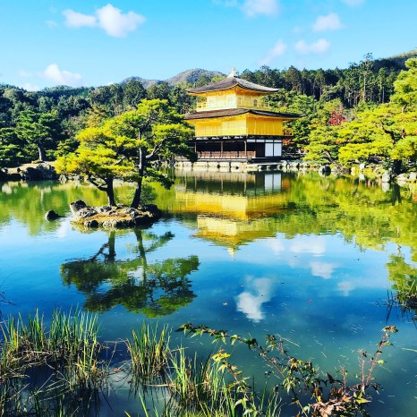 Redeem Amex Membership Rewards for Japan flights