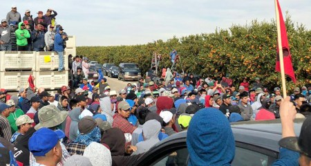 Strike meeting of 1,800 immigrant fruit pickers in Bakersfield, California, last year over pay cuts. With White House OK, big farmers are planning wage cuts to those on temporary guest visas, an attack on all workers.