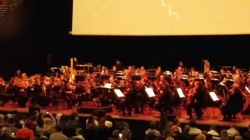 That is one magnificent orchestra