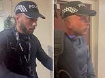 Two men armed with batons 'impersonating police officers' try to get into a woman's home