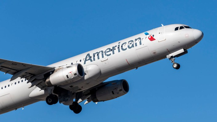 American Airlines plane lands 'without incident' after reported bird strike
