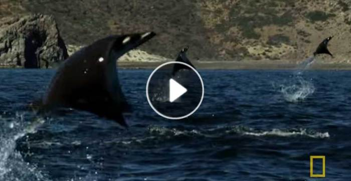 An Incredible, Unexplainable Event Was Filmed. You Have To See This!