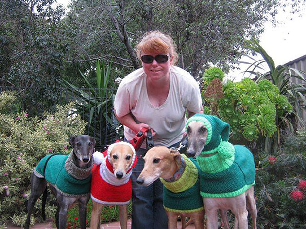 This Woman Quit Her Job To Knit Sweaters For Abandoned Greyhounds
