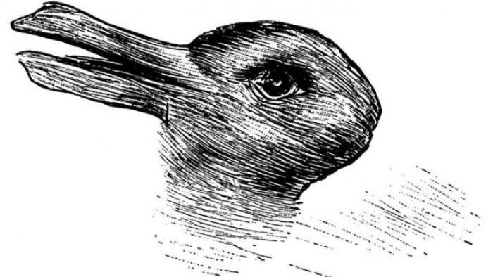 LOOK: Is This a Rabbit or a Duck? What Your Answer Says About You