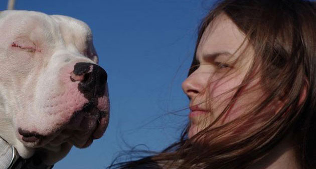 Blind Pit Bull Wound Up Comforting The Girl Who Rescued Him