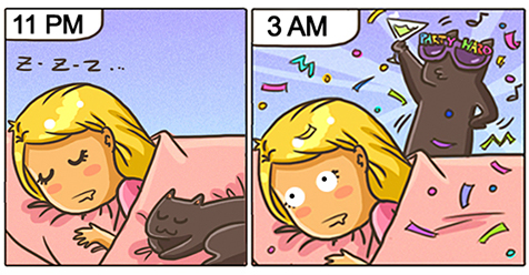 15 Comics Show Why It's Never Boring To Live With A Cat