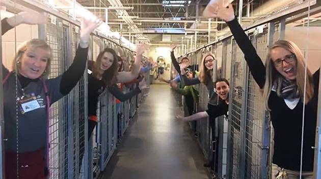 Animal Shelter Celebrates Their Happiest Day Ever Because All Kennels Are Empty